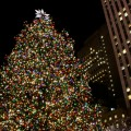 sapin noel new york