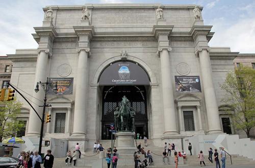 Le Musée d'Histoire Naturelle à New York